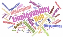 Why is it important to promote  employabilty within a sustainable development  model of firms?