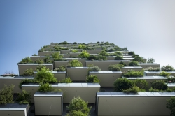 Top 5 most successful green city strategies in 2016