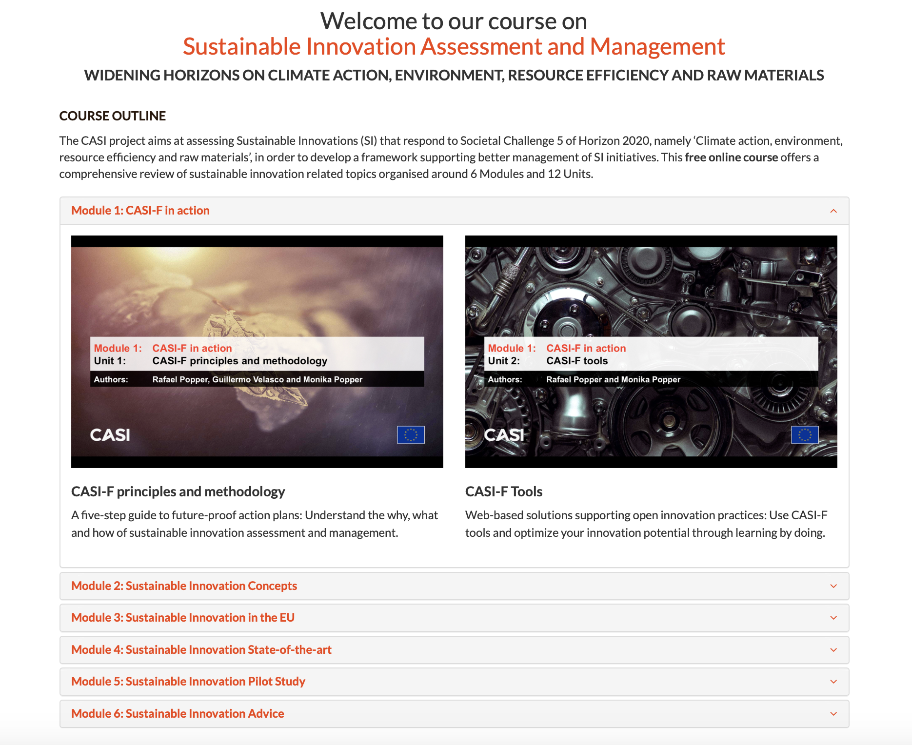 Sustainable Innovation Tutorial (Executive Course)